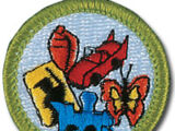 Collections (Merit Badge)