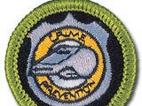 Crime Prevention (Merit Badge)