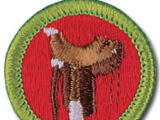 Horsemanship (Merit Badge)