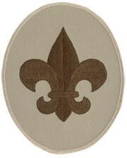 B-scout.jpg