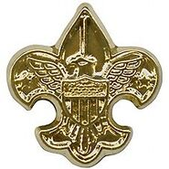 National Outdoor Badge for Camping Gold Device