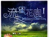 Meteor Garden (novels)