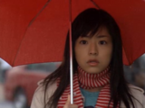 Hana Yori Dango (Japanese drama)/Episodes