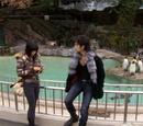 Episode 6 (Japanese drama)