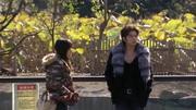 Tsukasa-Tsukushi-zoo