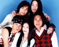 :Category:Meteor Garden