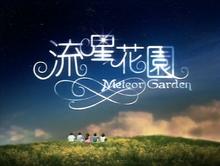 Meteor-Garden-card