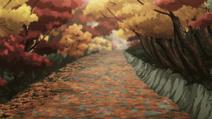Path (autmn)