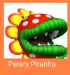 BKSM2 Petery Logo