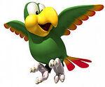 220px-DKCR squawks