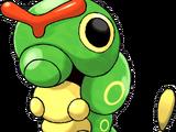 Bug (type)