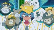 Bears-team