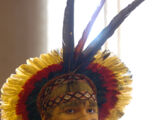 O Indígena brasileiro