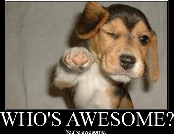 Whos is awesome? You are Blackbaud Community!