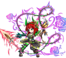 Leona spuntoni colorati