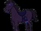 Paralyzed Horse