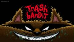 Trash Bandit