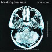 Breaking Benjamin40