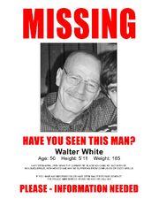 Walt Missing Poster