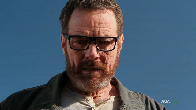 File:5x1 Walt looks at trunk.png