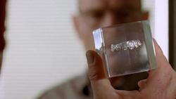 2x03 - Bit by a Dead Bee 5