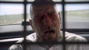 3x2 Walt peppersprayed