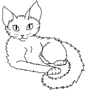 Long-haired female kittypet