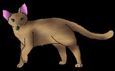 Ambernose medicine cat file