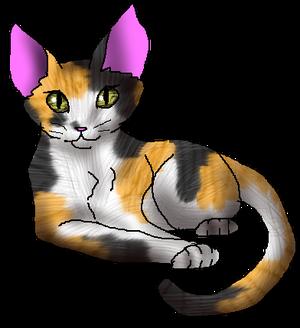 Callie kittypet file