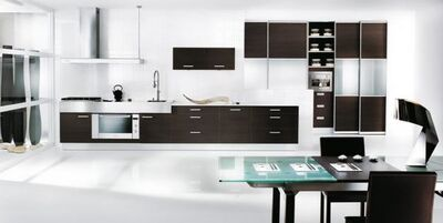 Black-and-white-themed-kitchen