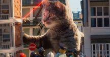 Lego nm cat 2
