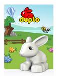 Themakaart DUPLO 2012