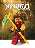 Themakaart Ninjago 201501