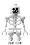 Skelet gen038 wit