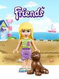 Themakaart Friends 201501