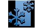 Frozen icon