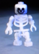 TCS Skeleton
