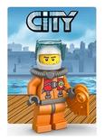 Themakaart City 2013