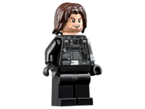 Winter Soldier (76051)