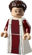 75222 Top Panel Minifigure 10