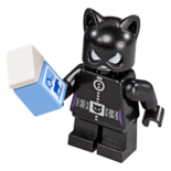 Catwoman (76061)