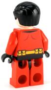 224px-Robin back.