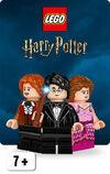 HarryPotter Theme Button 2019