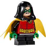 Robin 76056