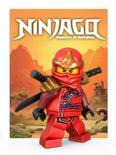Themakaart Ninjago 2012