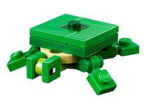 Turtle 21152