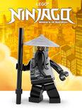 Themakaart Ninjago 201502