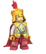 Koning cas441 bio