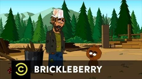 Brickleberry Hobo Larry