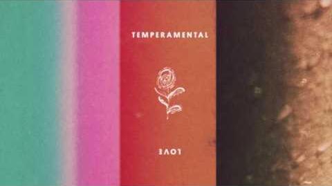 Bridgit Mendler x Devontée - Temperamental Love Audio